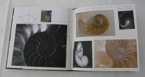 shell sketchbook