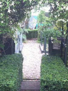 Clematis Arches and Box Hedging